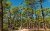Camping Club le Vivier in Biscarosse am Atlantik